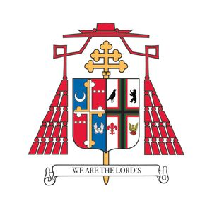 Installation Mass of Wilton Cardinal Gregory, Nov 28th at 9am CST (stream)